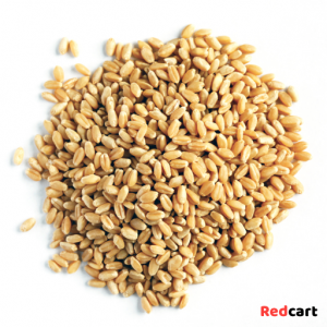 Wheat Whole 1kg - Pattu Brand